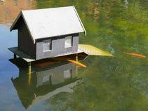 Lagoa de peixes de Koi com uma casa pequena foto de stock royalty free