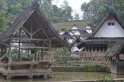 Lagoa de peixes tradicional Imagens de Stock Royalty Free