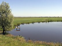 Lagoa de pesca Fotos de Stock Royalty Free