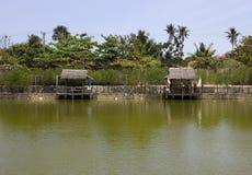Lagoa de pesca Fotografia de Stock