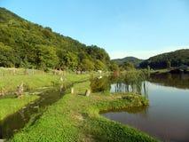 Lagoa de pesca Fotos de Stock