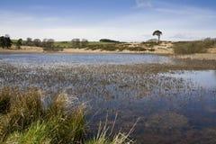 Lagoa de Priddy Imagens de Stock
