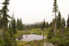 Lagoa de Revelstoke Foto de Stock Royalty Free