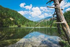 Lagoa de Taisho fotos de stock