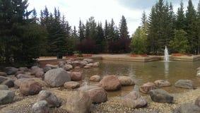 Lagoa decorativa 3 Imagens de Stock