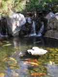 Lagoa decorativa fotografia de stock
