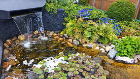 Lagoa decorativa no jardim Fotografia de Stock