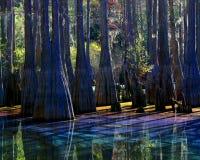Lagoa do arco-íris Imagem de Stock Royalty Free