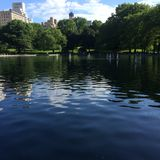 Lagoa do barco do Central Park Imagens de Stock Royalty Free