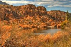 Lagoa do deserto fotos de stock royalty free