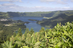 Lagoa do Fogo, Sao Miguel Royalty Free Stock Photo