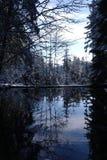 Lagoa do inverno Imagens de Stock Royalty Free