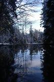 Lagoa do inverno Imagem de Stock Royalty Free