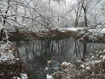 A lagoa do inverno Fotografia de Stock Royalty Free