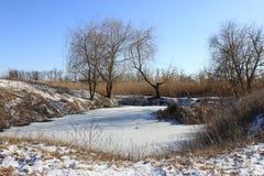 Lagoa do inverno imagens de stock