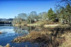 Lagoa do inverno com árvores estéreis e grama inoperante imagem de stock