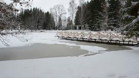 Lagoa do inverno com ponte de madeira vídeos de arquivo