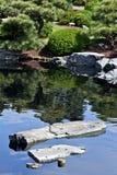 Lagoa do jardim Foto de Stock Royalty Free