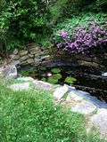 Lagoa do jardim Fotografia de Stock