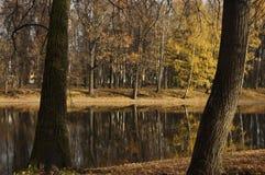 Lagoa do Linden Imagem de Stock