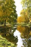 Lagoa do outono. Imagens de Stock