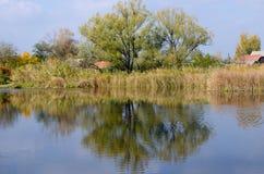 Lagoa do outono Foto de Stock
