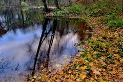 Lagoa do outono Imagem de Stock Royalty Free