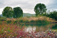 Lagoa do rio fotografia de stock royalty free