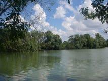 Lagoa do verão Fotos de Stock
