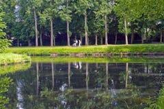 Lagoa do verão com uma reflexão brilhante Foto de Stock