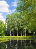Lagoa do verão com uma reflexão brilhante Foto de Stock Royalty Free