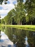 Lagoa do verão com uma reflexão brilhante Imagens de Stock