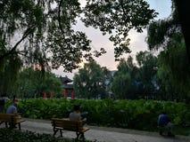Lagoa dos arruaceiros da universidade de Sichuan fotos de stock royalty free