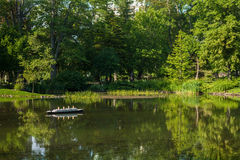 Lagoa dos jardins Imagens de Stock Royalty Free