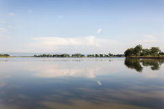 A lagoa e a árvore abertas grandes variam com montanha do fundo Foto de Stock