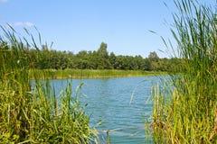 Lagoa e estações de tratamento de água no dia de verão Fotografia de Stock Royalty Free