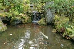 Lagoa e fonte de peixes no jardim de chá japonês fotografia de stock royalty free