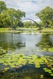 Lagoa e ponte Imagem de Stock