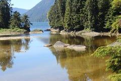 Lagoa em Anan Bear Observatory no verão perto de Wrangell Alaska foto de stock