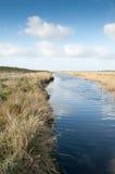 Lagoa em direção à terra com vegetação marginal Foto de Stock Royalty Free