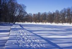 Lagoa em fevereiro Fotos de Stock Royalty Free
