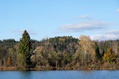 Lagoa em Icking Munich próximo em Baviera imagem de stock royalty free