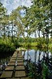 Lagoa em Kessel-Lo, Bélgica imagem de stock
