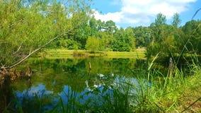 Lagoa em Maydelle, Texas imagem de stock