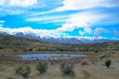 Lagoa em montanhas secas de Nova Zelândia Fotografia de Stock Royalty Free