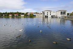 Lagoa em Reykjavik central Fotografia de Stock