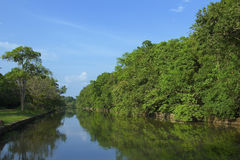 Lagoa em Sigiriya, Sri Lanka Imagens de Stock Royalty Free