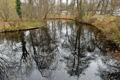 Lagoa em Tiergarten, Berlim Fotos de Stock
