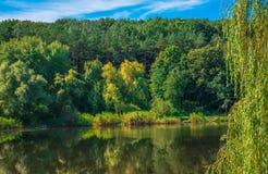 Lagoa em um dia ensolarado Foto de Stock Royalty Free