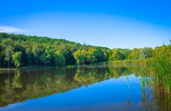 Lagoa em um dia ensolarado Foto de Stock